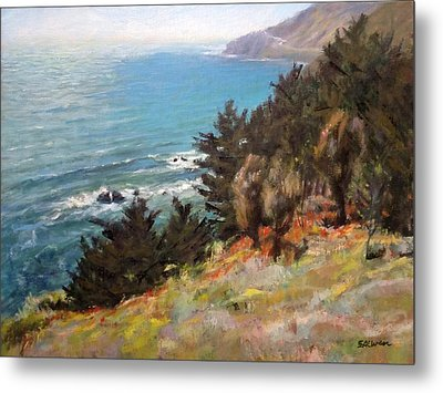 Sea And Pines Near Ragged Point, California Metal Print by Peter Salwen