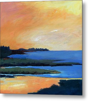 Metal Print featuring the painting Sea And Sky by Gary Coleman