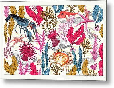 Sea Bed Metal Print by Jacqueline Colley