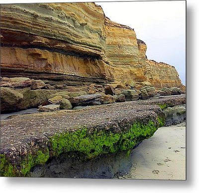 Sea Cliff Metal Print by Betty Buller Whitehead