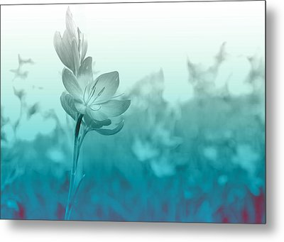 Sea Green Haze Metal Print