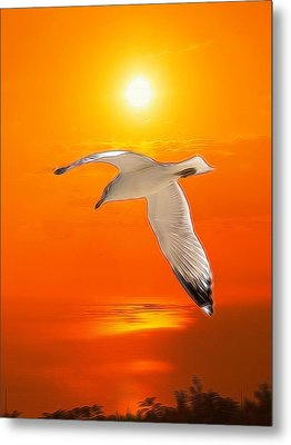 Metal Print featuring the photograph Sea Gull by Athala Carole Bruckner