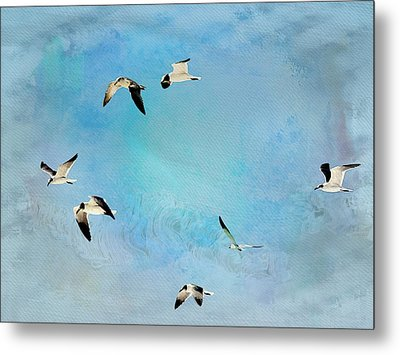 Metal Print featuring the photograph Sea Gulls In Flight by Athala Carole Bruckner
