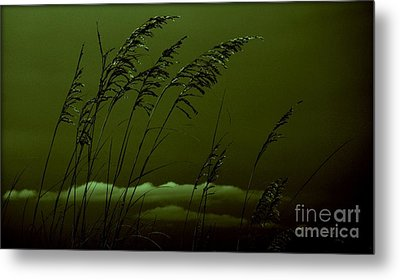 Sea Oat And Clouds Metal Print by Janice Spivey