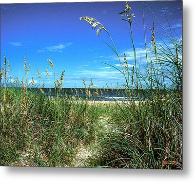 Sea Oat Dunes 11d Metal Print by Gerry Gantt