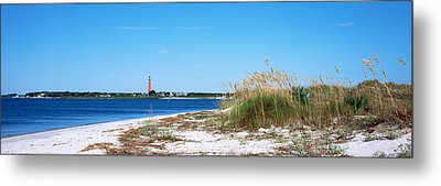Sea Oat Grass On Beach With Ponce De Metal Print