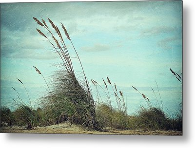 Sea Oats In The Breeze Metal Print by Toni Abdnour