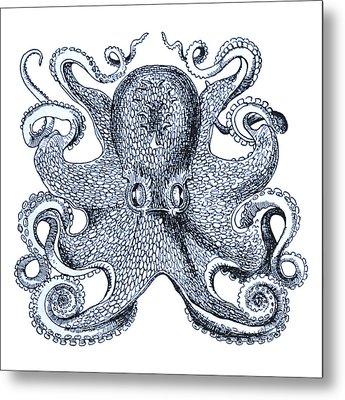 Sea Octopus Coastal Decor Metal Print by Erin Cadigan