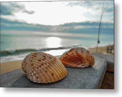 Sea Shells Metal Print by Josy Cue