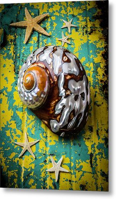 Sea Snail Shell With Stars Metal Print