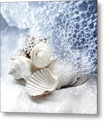 Sea Snails Metal Print by Maika 777