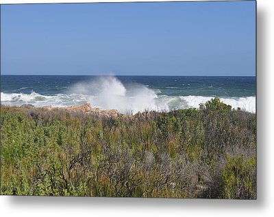 Metal Print featuring the photograph Sea Spray by Linda Ferreira