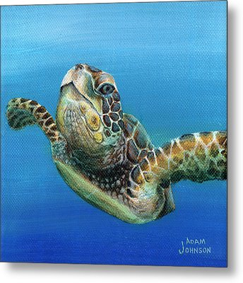 Sea Turtle 3 Of 3 Metal Print