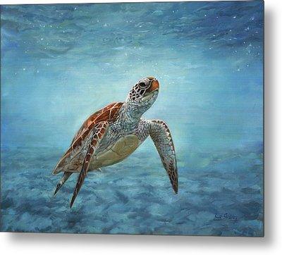 Sea Turtle Metal Print by David Stribbling