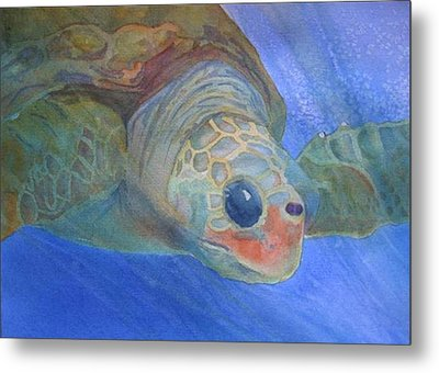 Sea Turtle IIi Metal Print by Dee Durbin