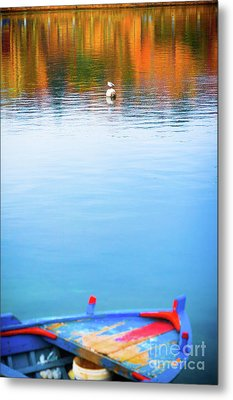 Metal Print featuring the photograph Seagull And Boat by Silvia Ganora