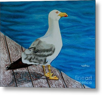 Seagull On The Shore - Gaviota En La Costa Metal Print by Melvin Rodriguez