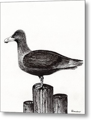 Seagull Portrait On Pier Piling E3 Metal Print by Ricardos Creations