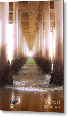 Metal Print featuring the photograph Seagull Under The Pier by Jerry Cowart