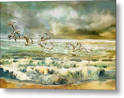 Seagulls At Sea Metal Print by Anne Weirich