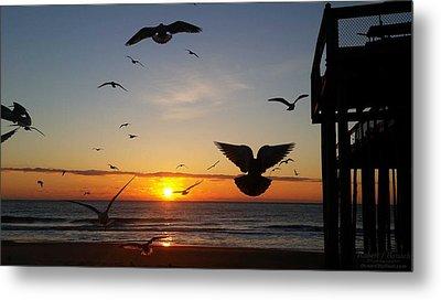 Seagulls At Sunrise Metal Print