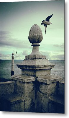 Metal Print featuring the photograph Seagulls In Columns Dock by Carlos Caetano