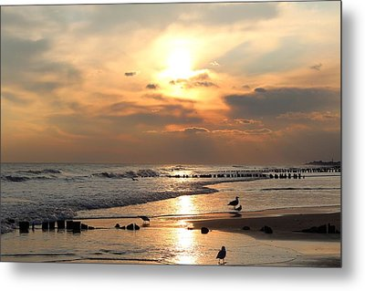 Seagulls On Beach Metal Print