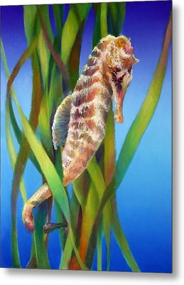 Seahorse I Among The Reeds Metal Print by Nancy Tilles