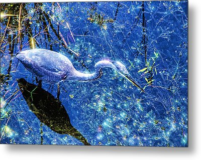 Searching For The Right Gem Metal Print by Dennis Baswell