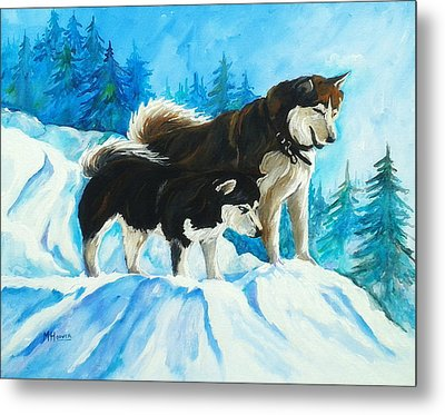Searching Huskies Metal Print by Marla Hoover