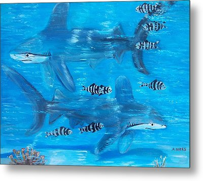 Searching Sharks Metal Print by Aleta Parks