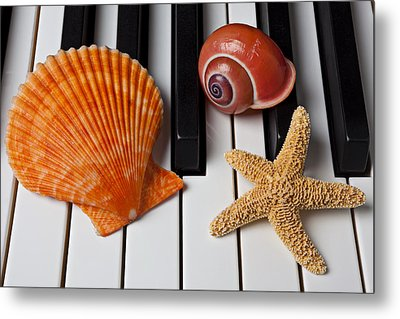Seashell And Starfish On Piano Metal Print by Garry Gay