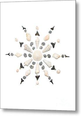 Seashell Snowflake 3 Metal Print by Jennifer Booher