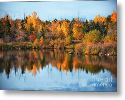 Seasonal Reflection Metal Print