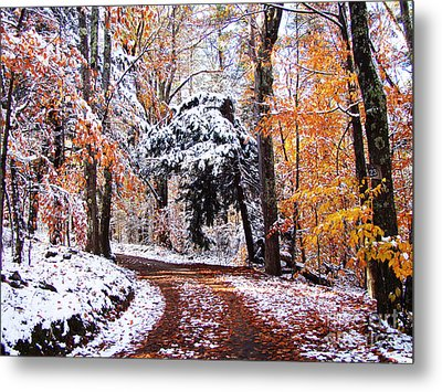 Metal Print featuring the photograph Seasons Cross by Betsy Zimmerli