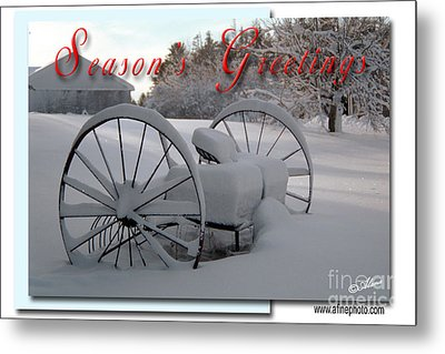 Metal Print featuring the photograph Seasons Greetings by Alana Ranney