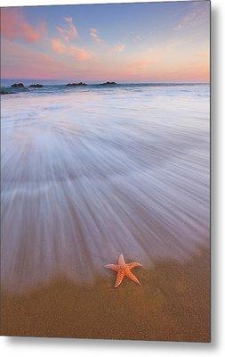 Seastar Sunrise Metal Print by Darren White