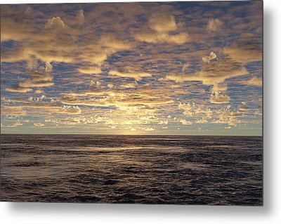 Metal Print featuring the photograph Seaview by Mark Greenberg