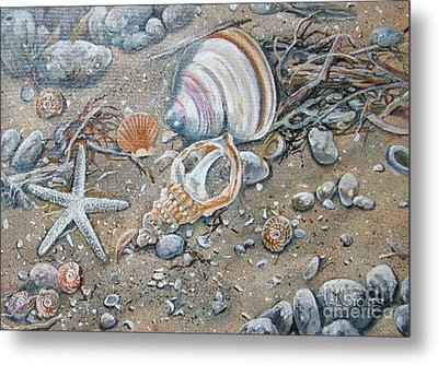 Seaweed And Shells Metal Print by Val Stokes