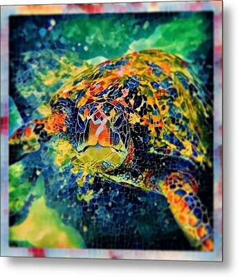 Sebastian The Turtle Metal Print by Erika Swartzkopf