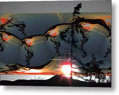 Sechelt Tree 12 Metal Print