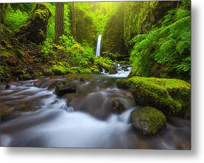 Seclusion Metal Print by Darren  White