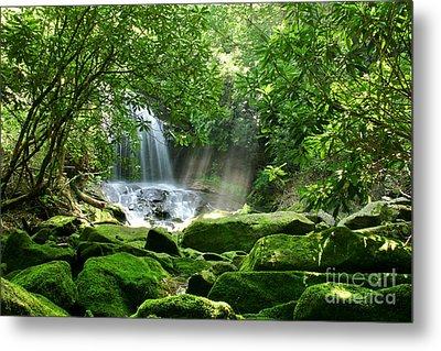 Secret Paradise - Hidden Appalachian Waterfall Metal Print by Matt Tilghman