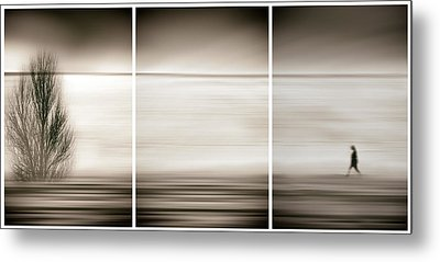 Seeking The Invisible Metal Print by Paulo Abrantes