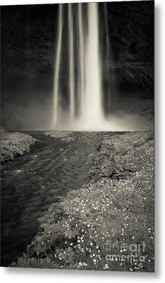 Seljalandsfoss Waterfall Iceland Metal Print