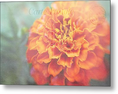 Metal Print featuring the photograph Send With Love by Diane Alexander