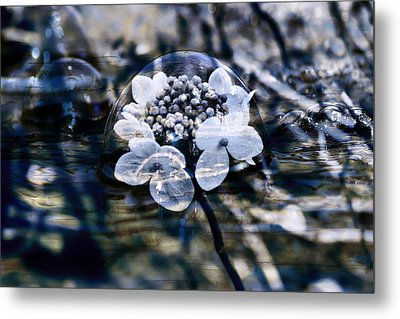 Send You Some Feeling Of Blue Metal Print by Nicole Frischlich