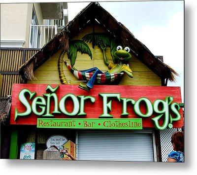 Senor Frogs Metal Print