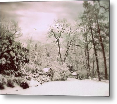 Metal Print featuring the photograph Serene In Snow by Jessica Jenney