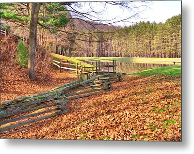 Metal Print featuring the photograph Serene Lake by Gordon Elwell